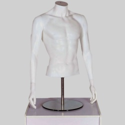 Male Torso Headless Mannequin Matt White