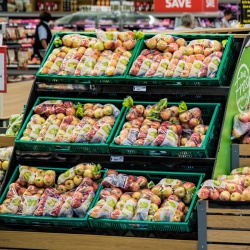 Fruit & Vegetables Display Equipment